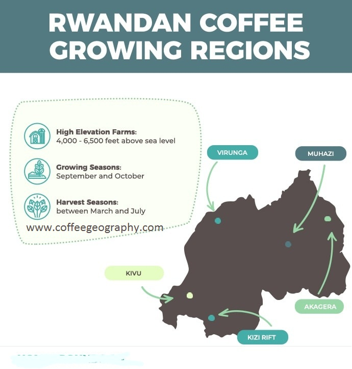 Rwandan Coffee Growing Regions